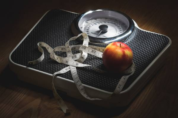 Elementary rules in the fight against overweight. You need to lose weight competently